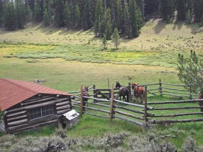 lazy_lb_ranch_043