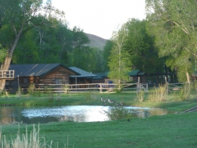 lazy_lb_ranch_133