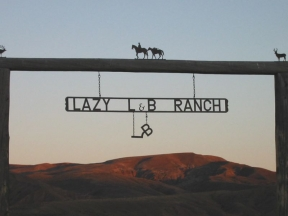 lazy_lb_ranch_144