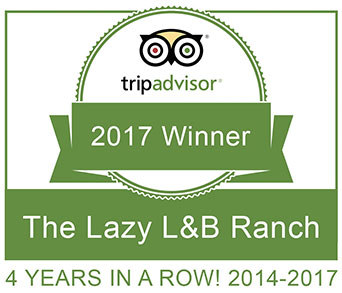 2017 TripAdvisor Certificate of Excellence (4th year)!