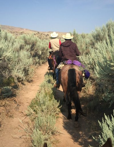 Two riders on horseback on a trail with towering sagebrush - Lazy L&B Dude Ranch Wyoming