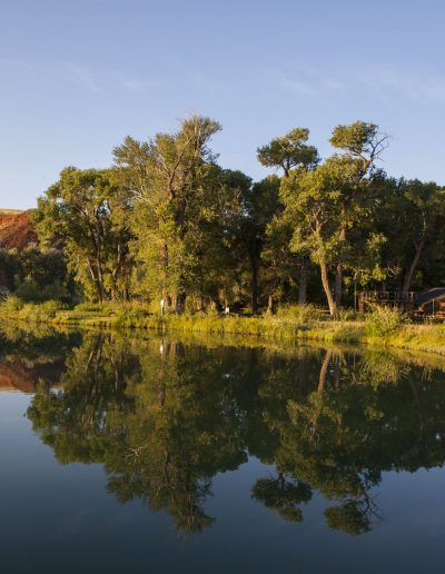 Pond with very still water reflecting buck and rail fence and cottonwood trees in early morning light - Lazy L&B Guest Ranch Wyoming